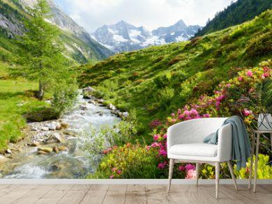Alpenrosen am Hochgebirgsbach