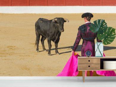 Bullfighter in front of the bull