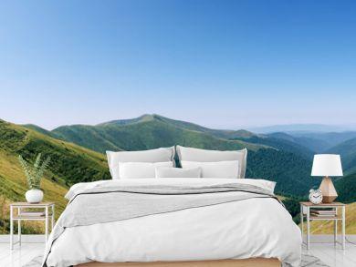 Panorama mountains green hills