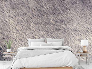 natural fur texture background