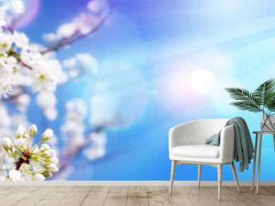 Spring Blooming - White Blossoms And Sunlight In The Sky
