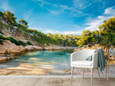 Beautiful nature of Calanques on the azure coast of France. Coas