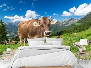 Cow on green grass in front of wonderfull mountain landscape / Kuh auf Wiese vor wundervoller Alpen Landschaft