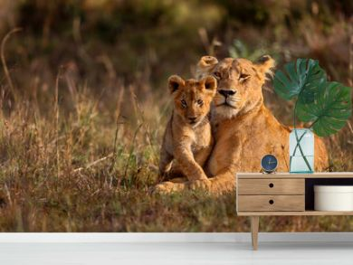 Lion mother of Notches Rongai Pride with cub in Masai Mara, Kenya