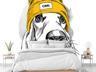 Portrait of Basset Hound dog in a Hipster hat and with scarf. Vector illustration.