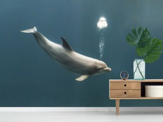 Bottlenose dolphin blowing bubbles