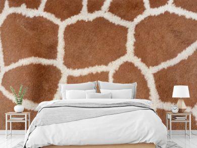 Animal background texture of a giraffe spots pattern