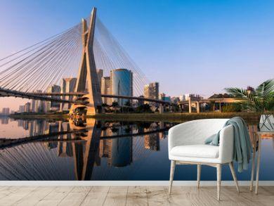 Octavio Frias de Oliveira Bridge in Sao Paulo is the Landmark of the City