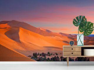 Oasis over sand dunes in Sahara desert in Morocco, Africa