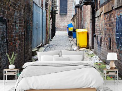 Wheelie bins in a garbage strewn alleyway