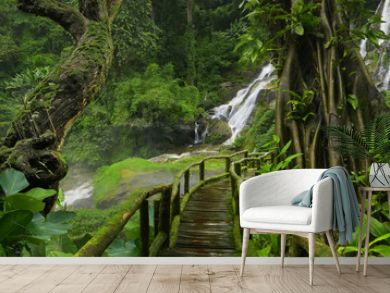 Thailand jungle with waterfalls