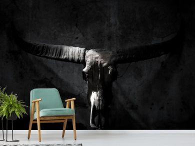 Buffalo skull with mystic symbol on dark Black and White background