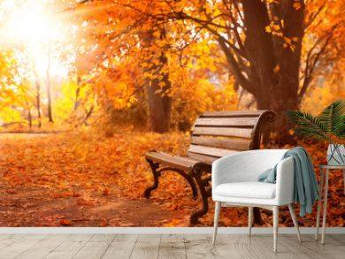 rural wooden bench.  autumn background