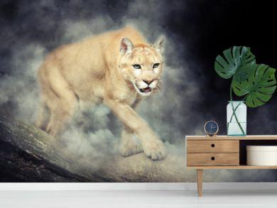 Puma in smoke