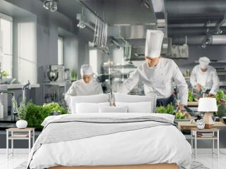 Famous Chef Works in a Big Restaurant Kitchen with His Help. Kitchen is Full of Food, Vegetables and Boiling Dishes.