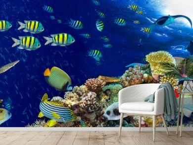 colorful wide underwater coral reef panorama banner background with many fishes turtle and marine life / Unterwasser Korallenriff Hintergrund