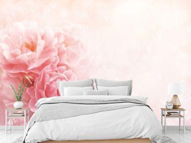 Summer blossoming roses, flower bokeh background, pastel and soft vintage floral card
