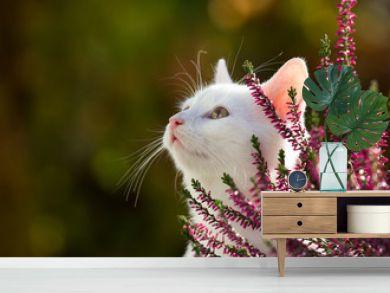 Portrait of cute white cat in garden