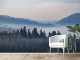 Foggy morning in the Ukrainian Carpathian Mountains in the autumn season