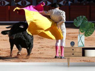 Torero y toro en la paza