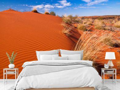 Red sand dunes and desert vegetation in central Australia