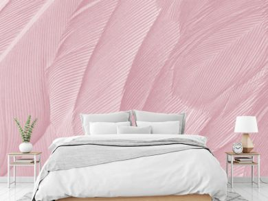 Beautiful Caral Blush violet vintage color trends feather texture background