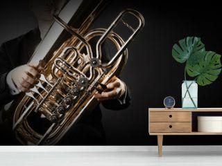 Tuba brass instrument hands closeup