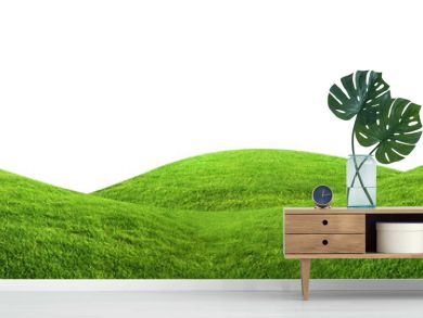 Green grass texture background isolated on white background with clipping path.