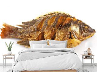 tilapia fish fried isolated on white background