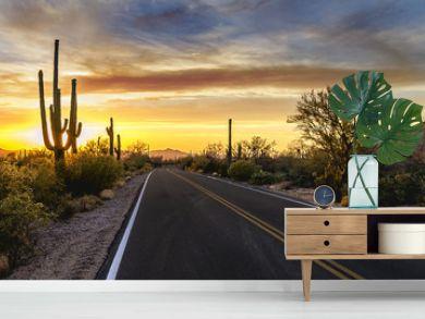 Arizona Desert Sunset Road