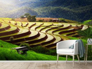 beautiful landscape view of rice terraces and house at chiang mai , Thailand. The village is in a valley among the rice terraces. Terraced Paddy Field in Mae-Jam Village chiang mai , Thailand.