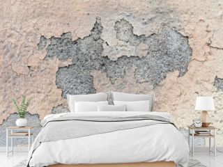 Rustic cement wall