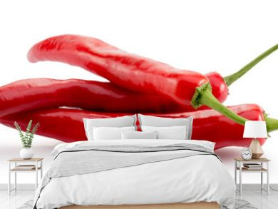 red chilli peppers isolated on a white background
