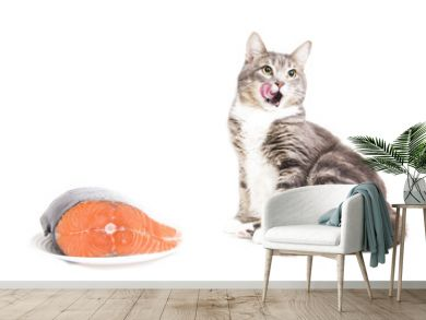 Gray striped cat with red fish on white background. Isolated on white. gray cat licked. Cat wants to eat fish