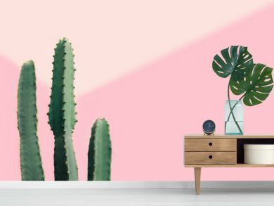 Green cactus on a pastel pink background with copy space