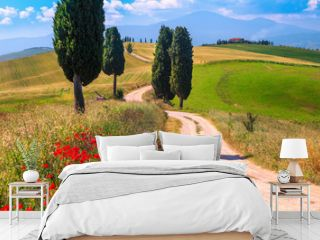 Summer Tuscany landscape with grain fields and rural road, Italy