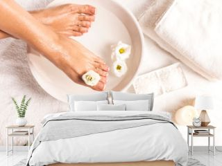Foot spa on white background. Spa background.