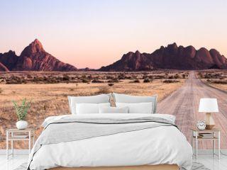 Road towards the Spitzkoppe, Namibia.