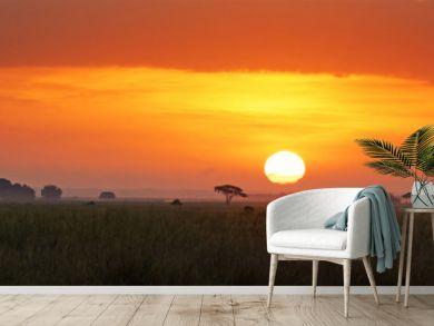 Sunrise in Amboseli National Park
