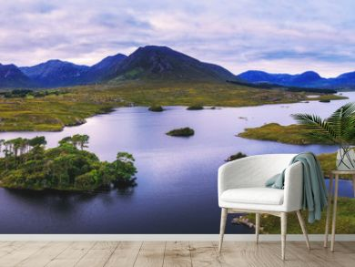 Aerial panorama of the Pine Trees Island in the Derryclare Lake
