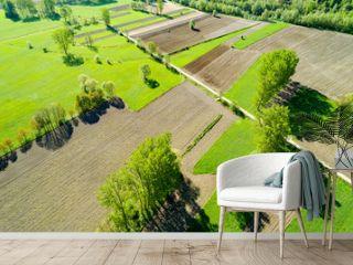 Campi arati e coltivati - vista aerea