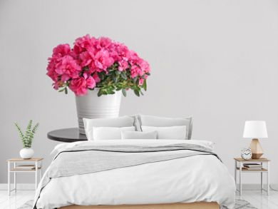 Pot with beautiful blooming azalea on table against grey background