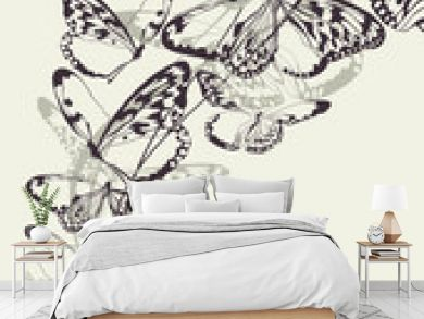 Beautiful butterfly vector background