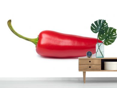 Single red Jalapeno pepper
