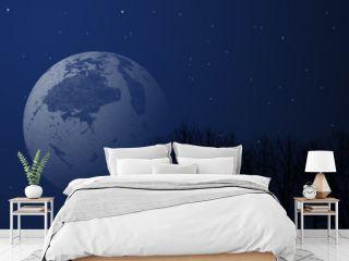Night sky image With trees and stars, big stars