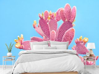 Fashion Cactus Coral colored on pastel Blue background. Trendy tropical plant close-up. Art Concept. Creative Style. Sweet coral fashionable cactus Mood