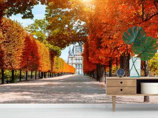 Yellow autumn trees in Tuileries Garden near Louvre in Paris, France. Beautiful autumn landscape