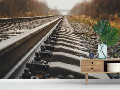 modern railway goes into foggy distance