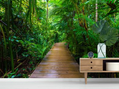 Wooden pathway in deep green mangrove forest