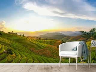 Panorama Aerial view Sunset scene of Pa Bong Piang terraced rice fields, Mae Chaem, Chiang Mai Thailand